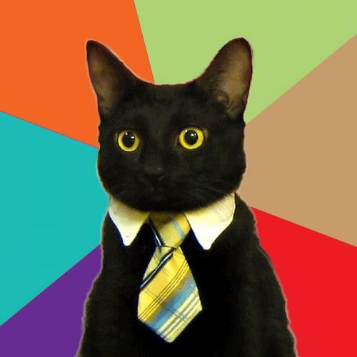 Image result for cat wearing tie