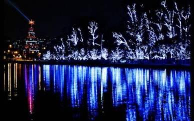 No Ibirapuera, tem árveore de Natal gigante e show de luzes no lago