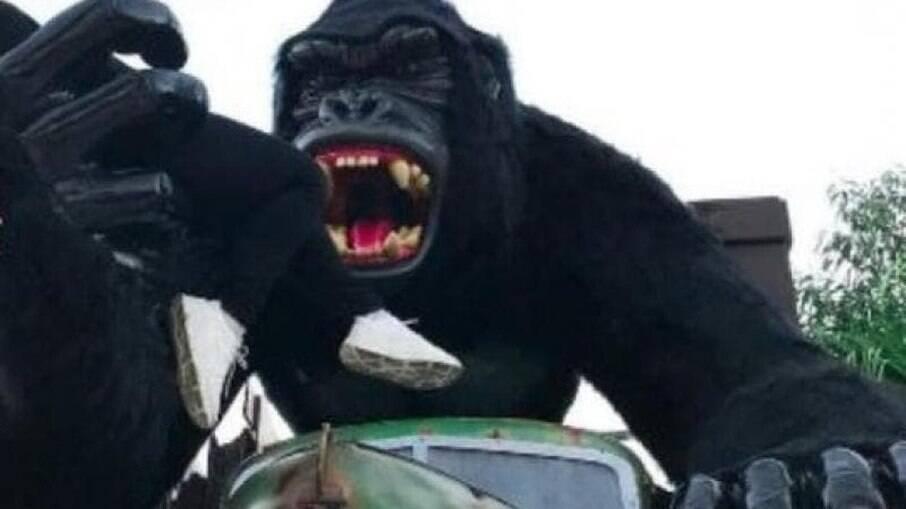 Menino caiu de estátua de gorila no sábado, 19