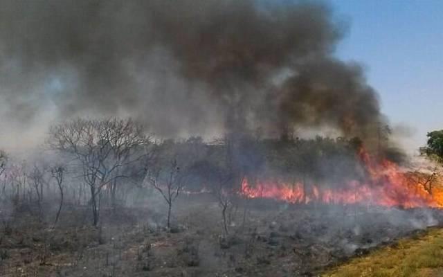 Incêndio Parque de Ibitipoca