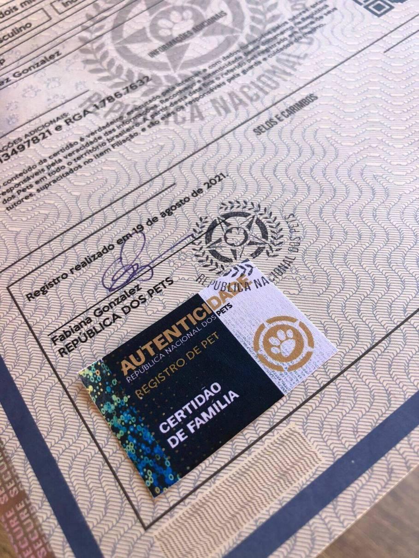 A certidão é impressa em papel moeda com itens de segurança. Foto: Divulgação