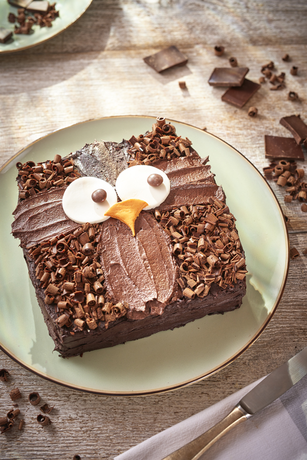Owl Cake Step By Step Recipe And Easy Cake Decoration In