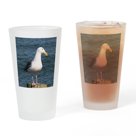 Seagull looking at you Drinking Glass