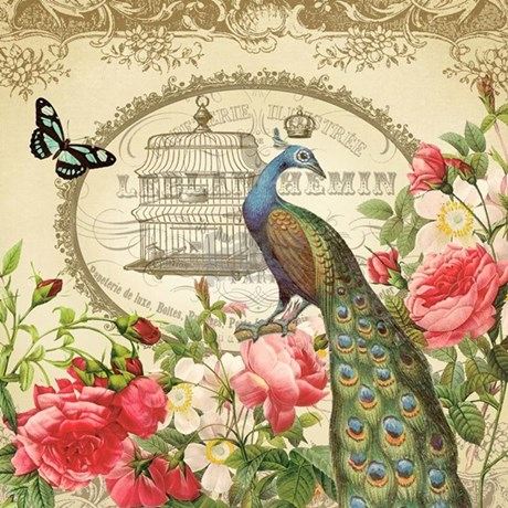 Vintage French Peacock And Roses Shower Curtain By