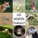 UK Wildlife