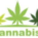 Buy Cannabis Buds Online | Buy Legal Marijuana Online