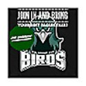 All About The Birds: Philadelphia Eagles Podcast!