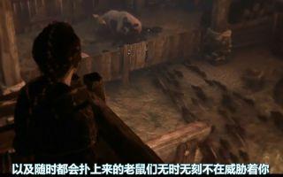 Pillars Of Eternity 2 Deadfire: 5 Turn-Based Combat Builds
