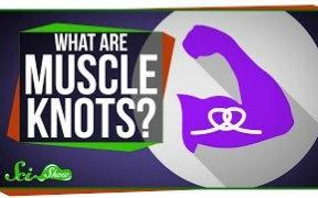 【Scishow】为什么会肌肉酸痛抽筋