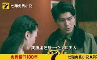【小说广告】《少帅你老婆又跑了》还挺有感觉?