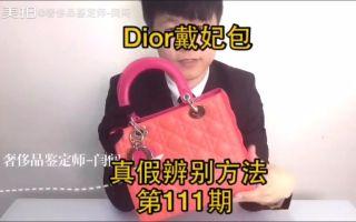 奢侈品鉴定方法dior迪奥戴妃包最经典的颜色真假辨认技巧