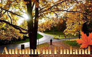 捕捉芬兰的瞬间 影像故事   入秋的芬兰,冷暖之间的交融是颜色最美的季节