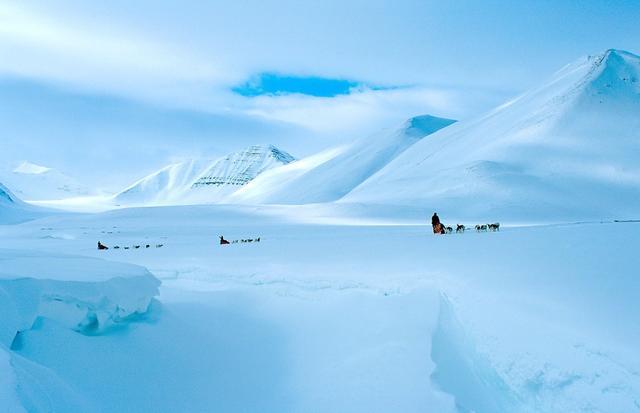 北極冷酷到什麼程度? - 每日頭條