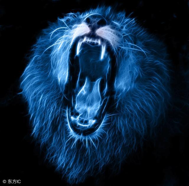 獅子座(Leo)十一月的重大轉折 - 每日頭條