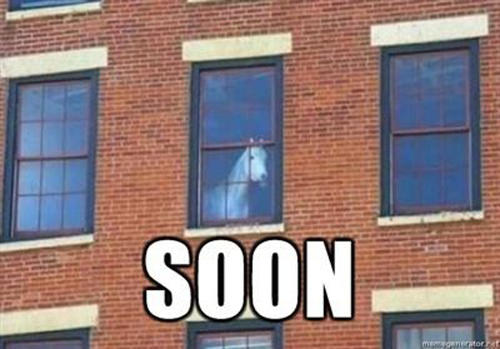 A horse peering from an upstairs window, with the caption SOON.