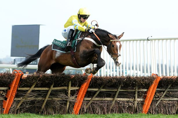 Image result for grand national horses 2017