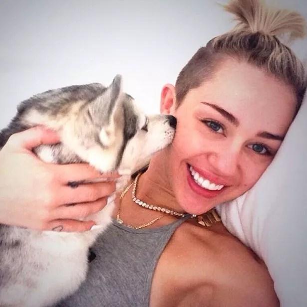 Miley Cyrus Floyd