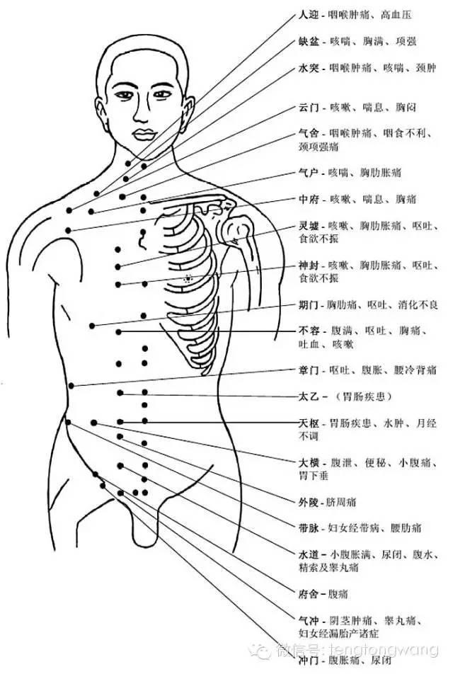 非常完整的人體穴位圖與功效(果斷收藏) - 壹讀