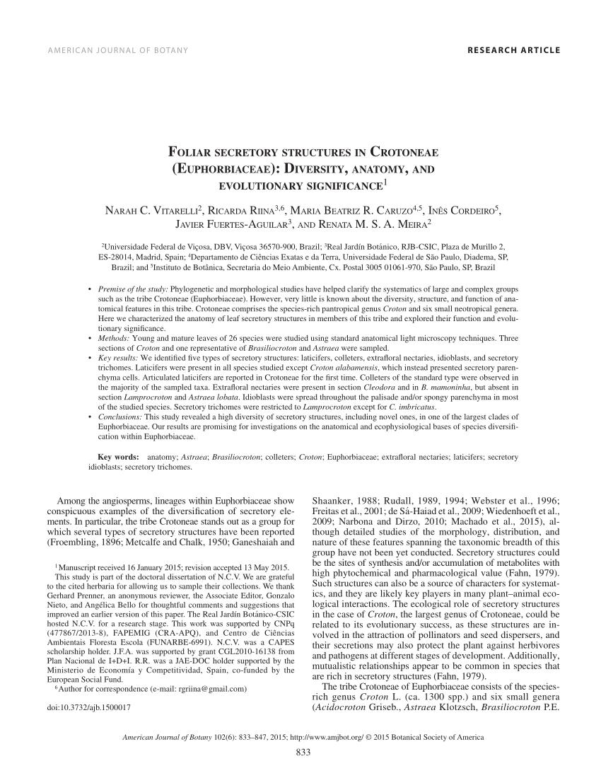 Pdf Foliar Secretory Structures In Crotoneae Euphorbiaceae Diversity Anatomy And Evolutionary Significance