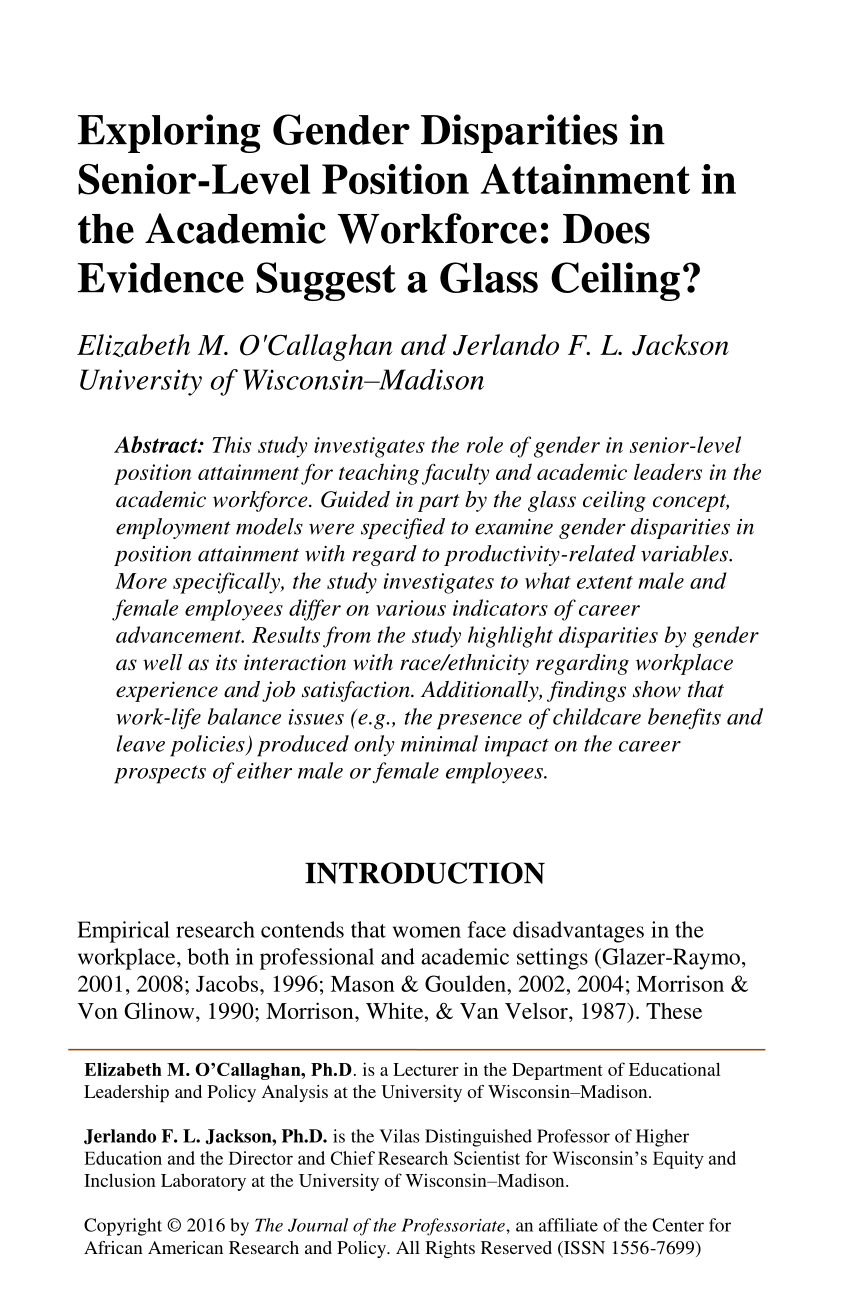 Pdf What Do We Know About Glass Ceiling Effects A Taxonomy And Critical Review To Inform Higher Education Research