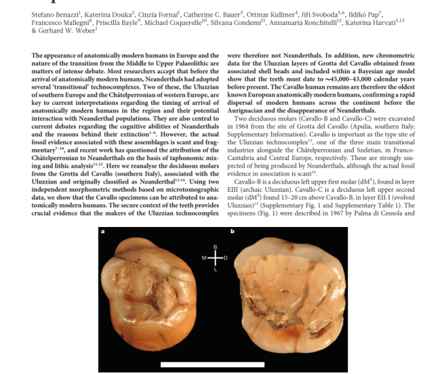 Pdf Early Dispersal Of Modern Humans In Europe And Implications For Neanderthal Behaviour