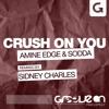 Amine Edge & Sodda - Crush On You Sidney Charles Remix GROOVE ON mp3