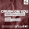 Amine Edge & Sodda - Crush On You Sidney Charles Remix mp3