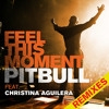 Feel This Moment DJ Riddler RMX Extended Mix mp3