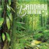 Bandari - Dragon Heart mp3