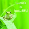 mission決定曲  Sunlife Is Beautiful mp3