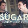 Sugar Maroon 5 - Sam Tsui & Jason Pitts Acoustic mp3