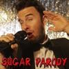 Maroon 5 - Sugar PARODY mp3