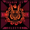 Sharam Jey & Daniel Fernandes - See InsidePreview BTLP008 OUT NOW mp3