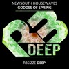 Newsouth Housewaves - Goddess Of Spring Original Mix OUT NOW mp3