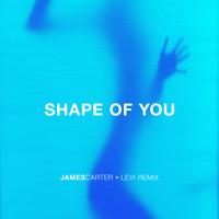 Ed Sheeran - Shape Of You (James Carter x Levi Remix) Mp3