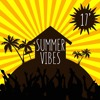 Summer Vibes 17' mp3