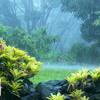 Sound Of Rain, Thunder & Bird Chirping - Meditation, Deep Sleep mp3