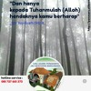 Surat Al Gaasyiyah-Metode Ummi mp3