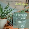 Steps You Can Take To Simplify Right Now Ep 127 mp3