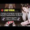 Dj Viral Aku Minta Terai Lagu TikTok Viral 2019 mp3