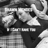If I Can't Have You - Shawn Mendes