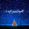 a soft good night  𝚋𝚝𝚜 𝚙𝚕𝚊𝚢𝚕𝚒𝚜𝚝  mp3