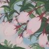 peach tree ☆゚.*・。゚* mp3
