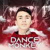 Mega Dance Monkey 2020 mp3