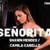 SEORITA  FRENCH VERSION  SHAWN MENDES, CAMILA CABELLO  SARA'H  mp3