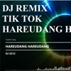 DJ EZ12 - HAREUDANG HAREUDANG mp3