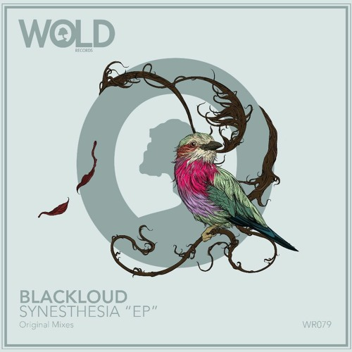 """Premiere: BLACKLOUD """"Anthracite"""" - Wold Records by 6AM"""