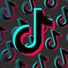 Charli D'amelio & James Charles - TikTok Dance Songs Mashup 2020 mp3
