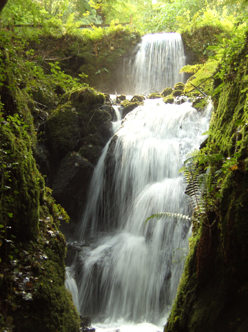 Canonteign Falls A Photo From Devon England TrekEarth