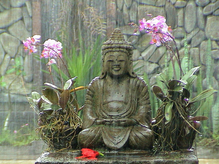Buddha in the rain - , Bali